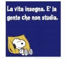 Le scuole italiane, tra pandemia, dad, agguati politici, supplentite e concorsite
